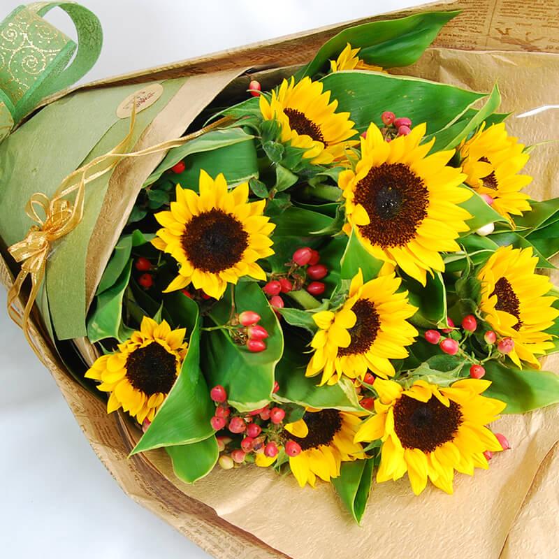 【巧繪網—祝福畢業季花禮】FS530095勇往直前‧向日葵花束‧多朵新鮮向日葵