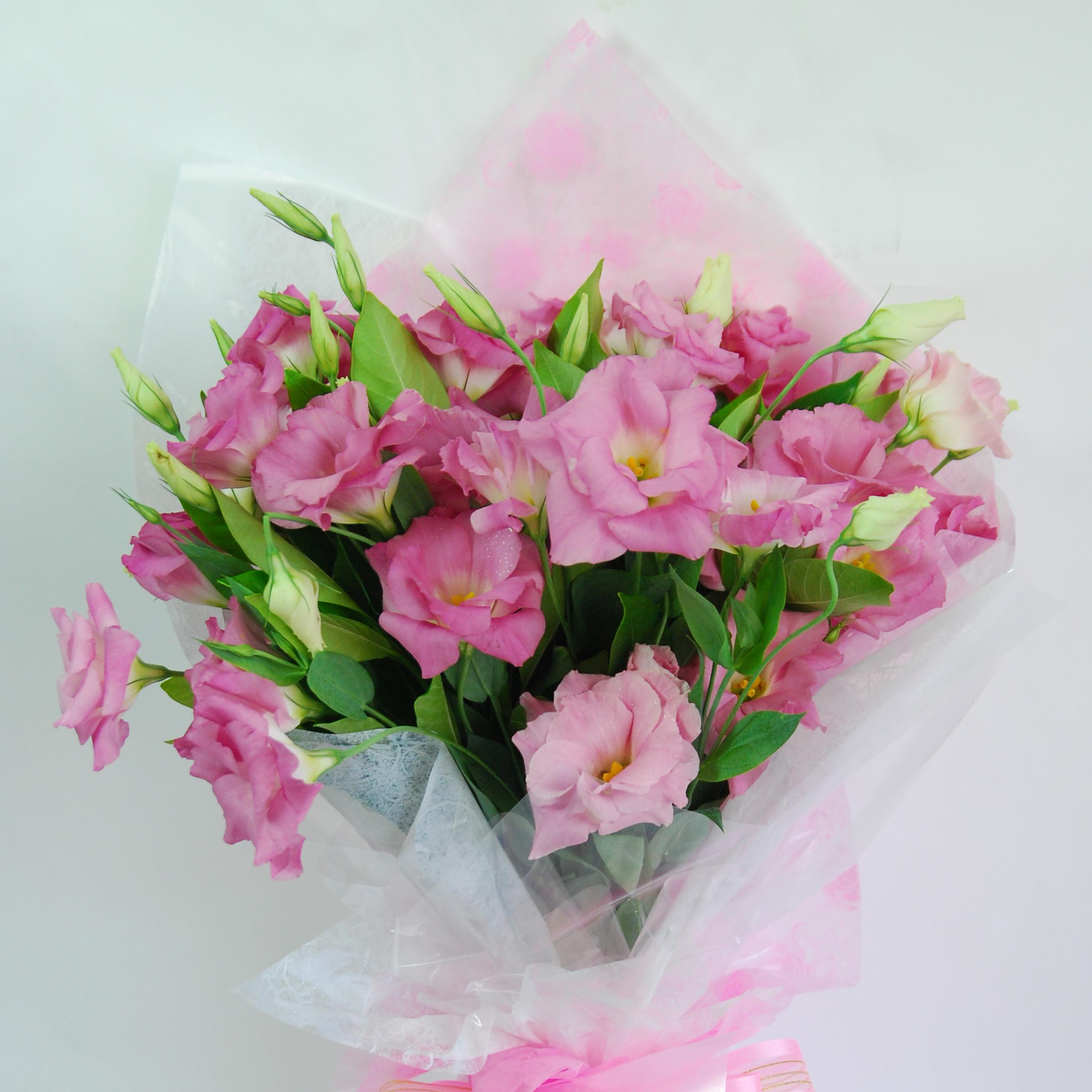 【巧繪網-FJ520134粉色花漾】=新鮮粉桔梗花束‧粉嫩熱賣中=網路花店/傳情花束/禮物