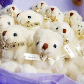 【巧繪網-B040027小熊同樂會】=超可愛11 Q小熊花束生日禮物網路花店傳情花束