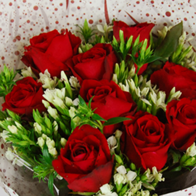 【巧繪網—浪漫花束花禮】FR520125 網路花店‧傳情=9朵紅玫瑰花束+當季花材