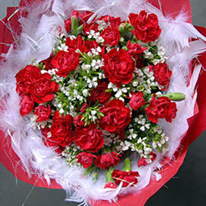 【巧繪網FK040326媽咪我愛妳】超值母親節花束/康乃馨/母親節禮物