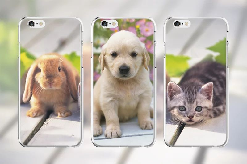 personalized-iphone-7plus-8plus-phonecase 客製化手機殼| iPhone7 Plus / 8 Plus |各式手機殼